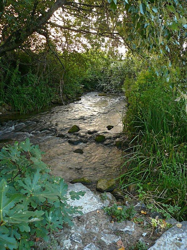 Rivière Krenides