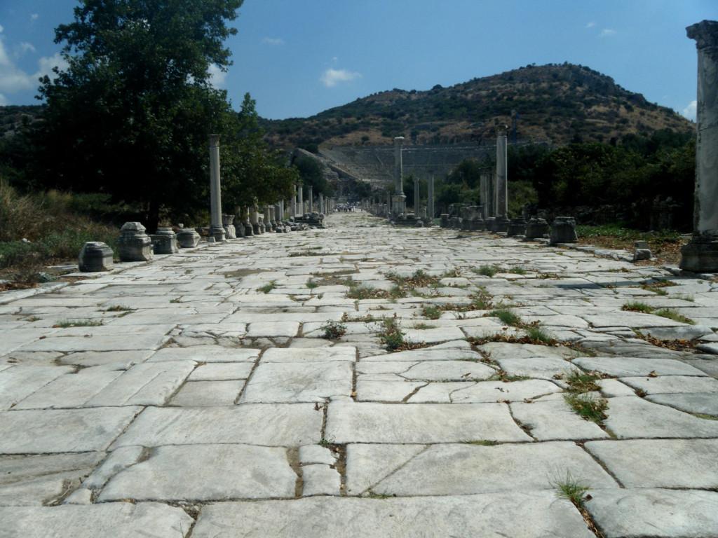 L'avenue Arcadiana